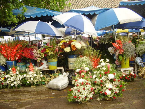 Flower market in downtown Cuenca
