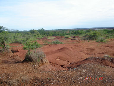 Did you ever see a tropical desert?   Near Chitre in the Azuaro