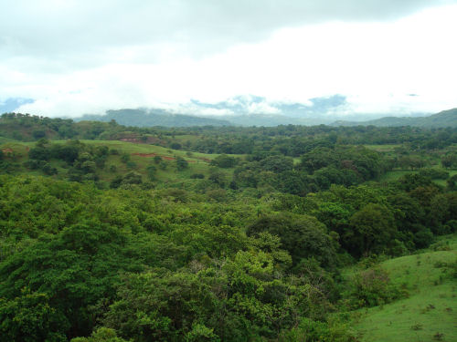 View from Rancho de Caldera, a small, beautiful resort near Boquete