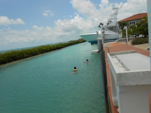 The canal was as great as the pool or the ocean.  We even saw a dolphin cruising the canal one morning.